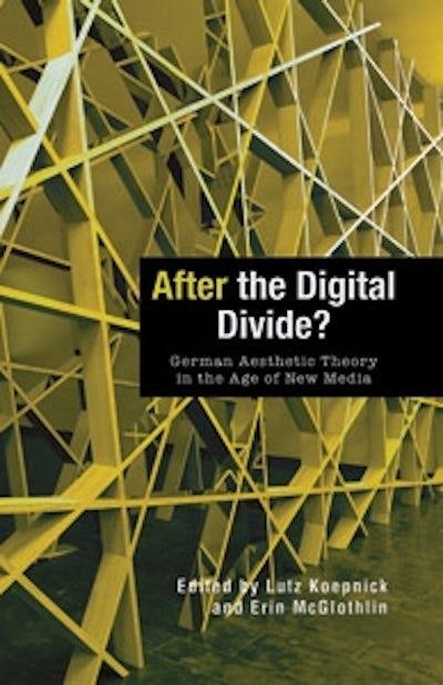 After the Digital Divide?